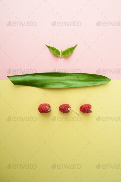 One raspberry, fresh mint and a leaf of a tropical plant on a pa