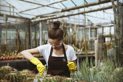 Concentrated young woman standing in greenhouse near plants