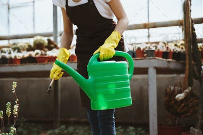Lady standing in greenhouse near plants with hand-pouring pot.