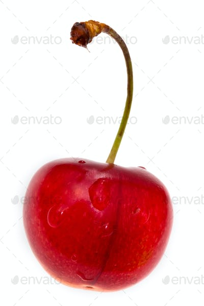 one red sweet cherry