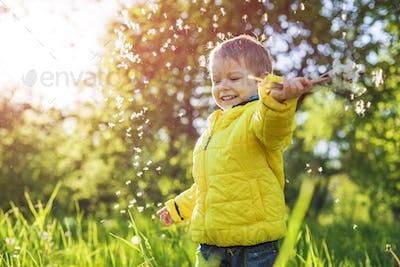 Portrait of happy little boy waving hand with dandelions