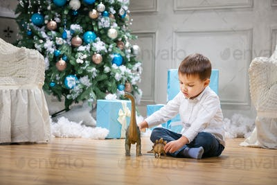 Little boy playing with toy dinosaurs by Christmas tree