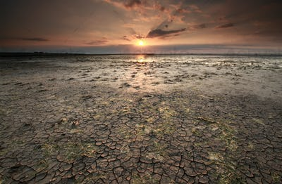 cracked mud at Wadden sea coast