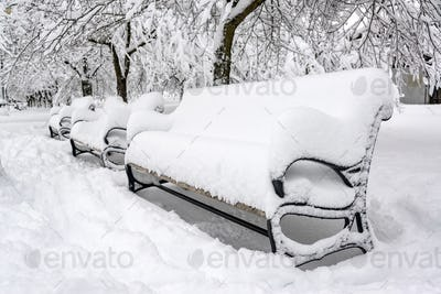 Snow Covered Park Benches