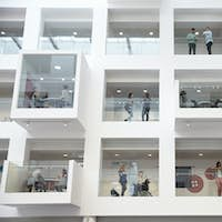 Students in study rooms, visible from the university lobby