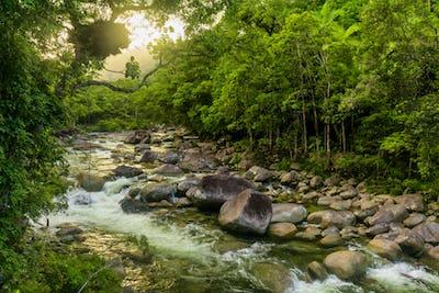 Mossman Gorge - river in Daintree National Park, Queensland, Aus