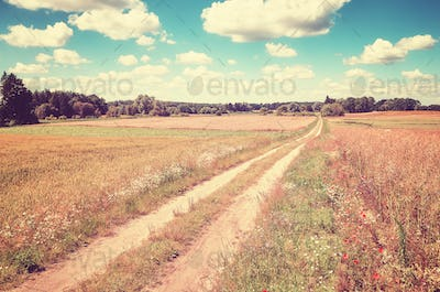 Vintage toned picture of a countryside road