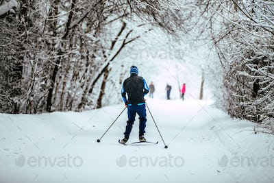 Men on Skis in Winter Forest