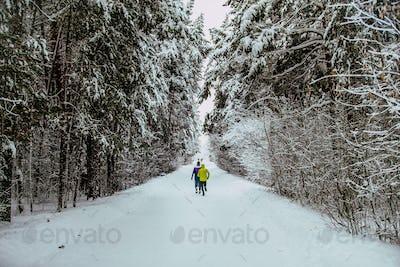 Marathon Winter Alley in Forest