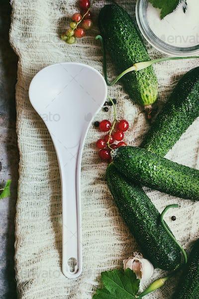 Fresh cucumbers prepared for pickling
