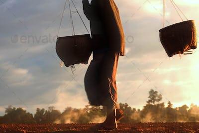women walking with a basket on fields