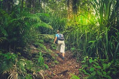 Girl walking up the jungle path to the summit of Gunung Rinjani