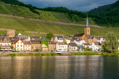 Vineyards above Moselle river and under dramatic sky near Alken, Germany