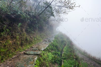 pathway on hill slope in rainy misty spring day