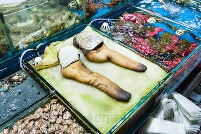 geoduck clams in fish market in Guangzhou city