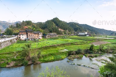 gardens, rice paddy, tea plantation in Chengyang