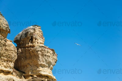 eroded sandstone cliff and seagull in blue sky