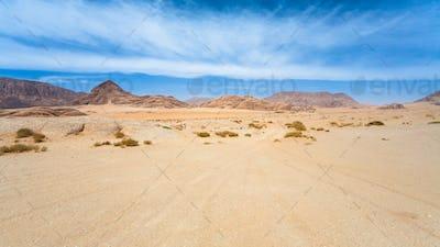 road in sand of Wadi Rum desert