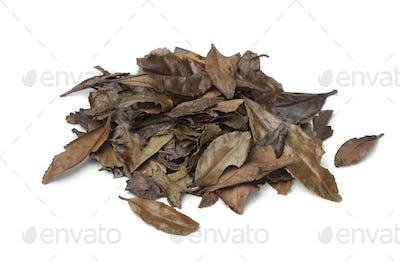 Heap of mountain tea leaves of the Meiji