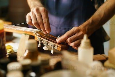 Artisan Lute Maker Fixing Guitar Replacing Cords