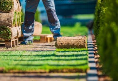 Grass Lawn Installation