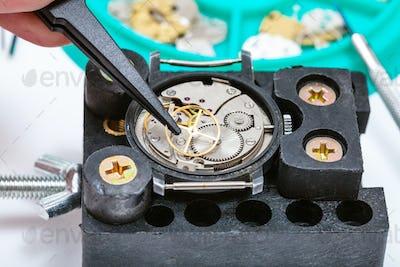 repairing of watch in holder with tweezer close up