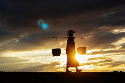 Farmers are walking at sunset