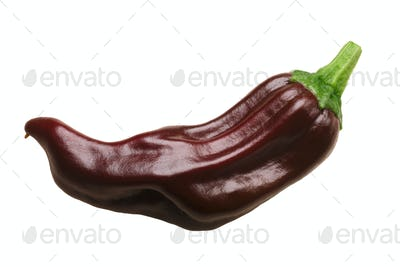 True Greek pepperoncino chile pepper, paths
