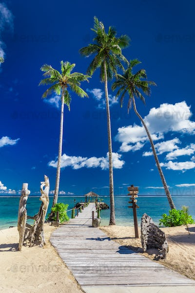 Tropical beach scene with coconut palm trees and jetty, South Pa