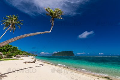 Tropical Lalomanu beach on Samoa Island with palm trees