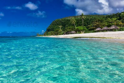 Tropical vibrant natural beach on Samoa Island with palm trees a
