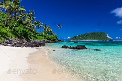 Tropical Lalomanu beach on Samoa Island with coconut palm trees