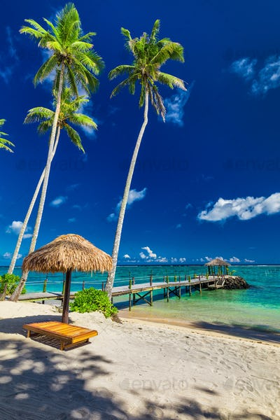 Tropical beach with coconut palm trees and jetty, South Pacific