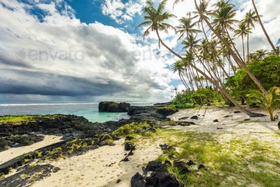 Tropical beach and ocean on Samoa Island with palm trees during