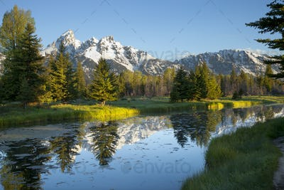 Grand Teton Mountains and Pond in Morning Light