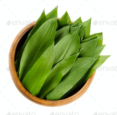 Ramsons, Allium ursinum in wooden bowl