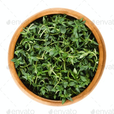 Fresh thyme stems in wooden bowl over white