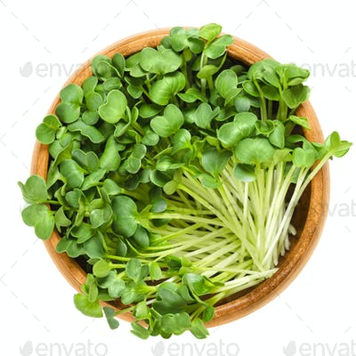 Daikon radish sprouts in wooden bowl over white
