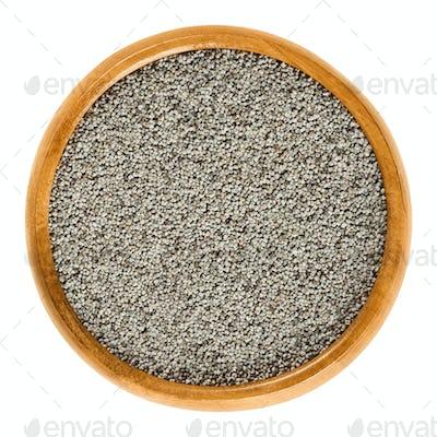 Gray poppy seeds in wooden bowl over white