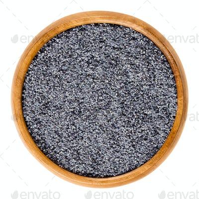 Blue poppy seeds in wooden bowl over white