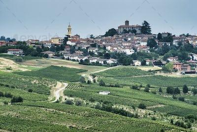 Oltrepo Piacentino (Italy), rural landscape at summer