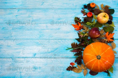 Thanksgiving  background with leaves and squash on blue wooden