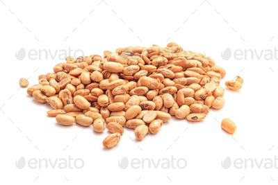 roasted soybeans