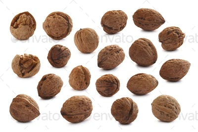 Set of cracked and shelled walnuts