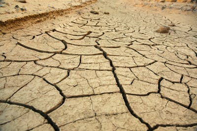Clay cracks on the ground near Zabriskie point