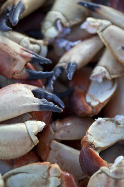 Crab claws on a stall