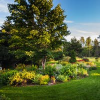 Beautiful Front Yark Garden