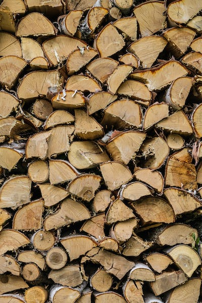 Dry Mixed Firewood Texture Background
