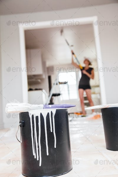 Painting and Renovation Theme