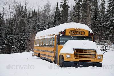 Abandoned weird school bus
